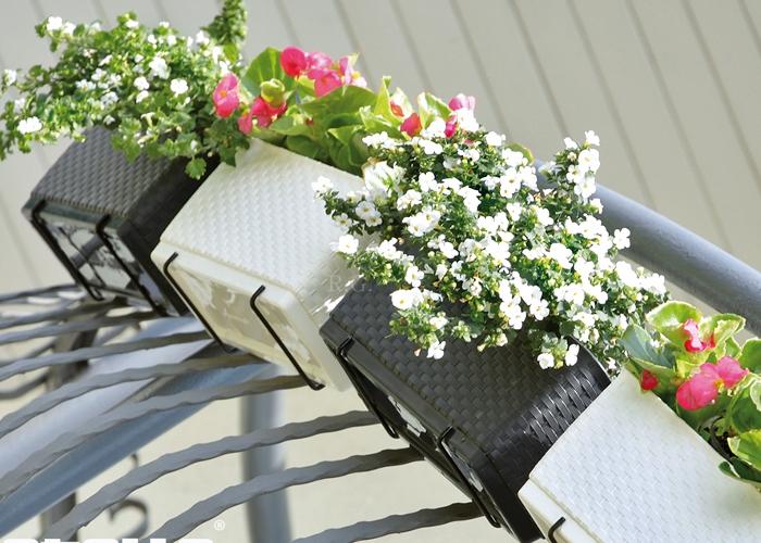 rgshop garten blumenkasten balkonkasten ratolla mit halterung 500 mocca. Black Bedroom Furniture Sets. Home Design Ideas